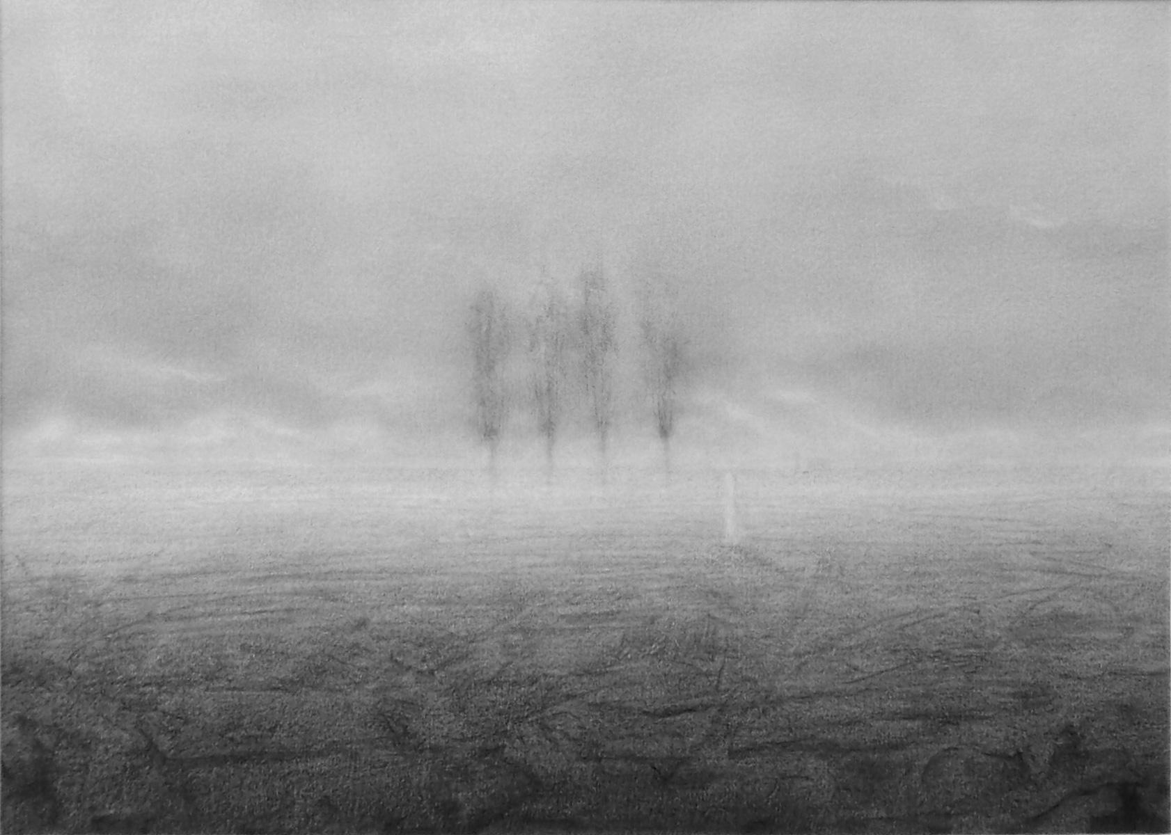 ZOOM - Paesaggio 4