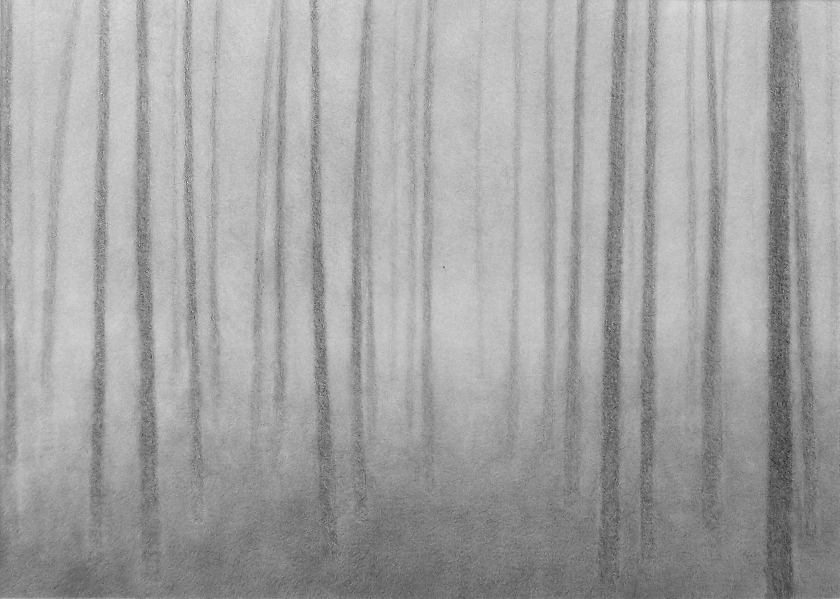 ZOOM - Paesaggio 5