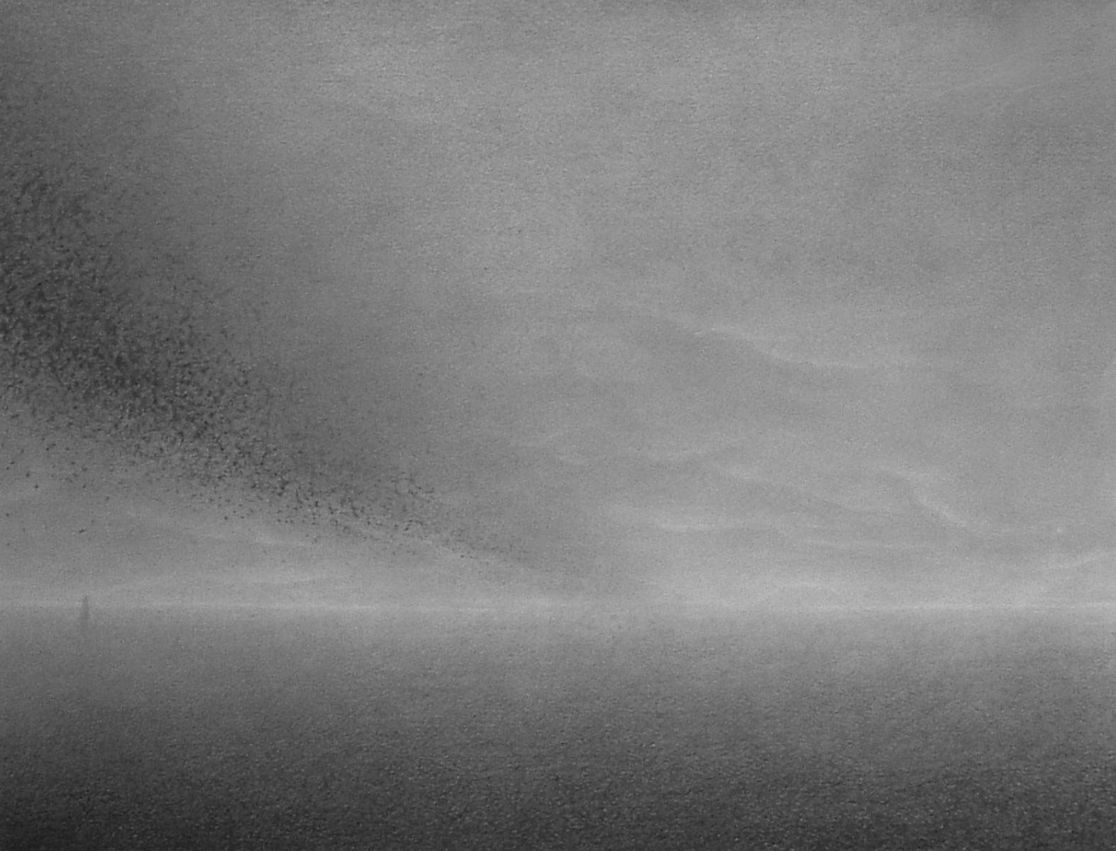 ZOOM - Paesaggio 8